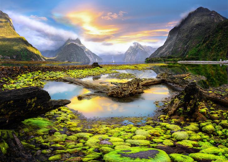 Фото №5 - Притягательная трясина: 12 самых живописных болот мира