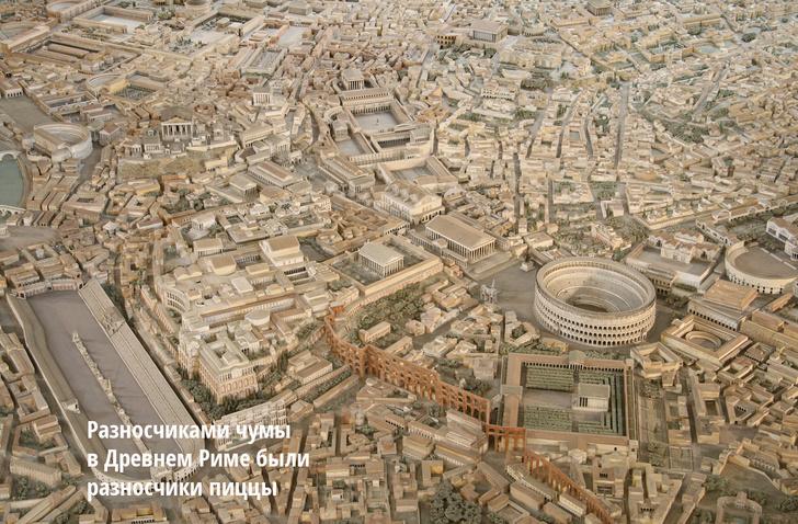 Фото №1 - Римские калигулы: макет Древнего Рима, сделанный для Бенито Муссолини