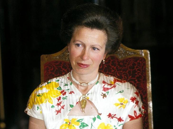 Фото №1 - Почему дворец закрывал глаза на измены принцессы Анны