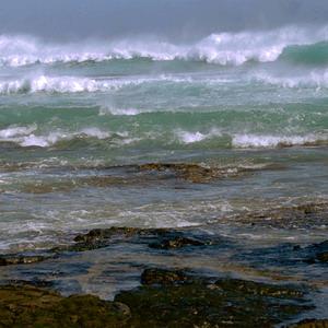 Фото №1 - Сегодня Всемирный день океанов