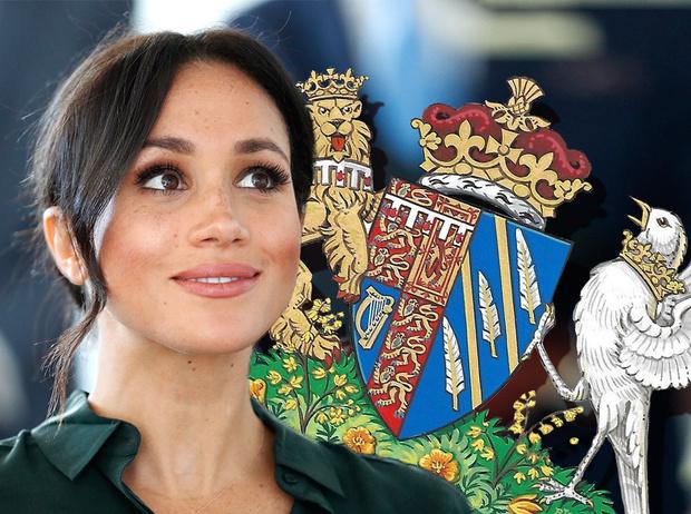 Фото №1 - Певчая птица, которую «задушила» Корона: как герб герцогини Меган оказался пророческим