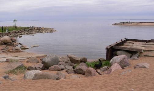 Фото №1 - Вещество, найденное в Финском заливе - не порох