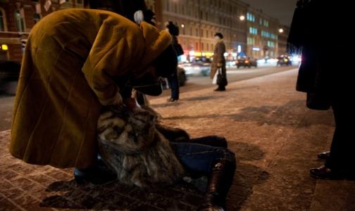 Фото №1 - В Петербурге назвали среднесуточное число травм от гололеда