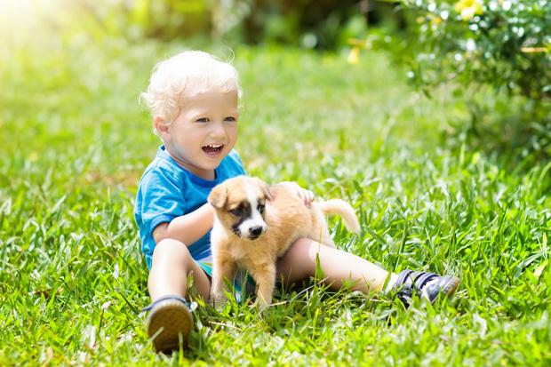 Фото №1 - Что делать, если ребенка укусил клещ: инструкция