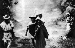 Фото №3 - Волшебный мир индейцев чьяпас