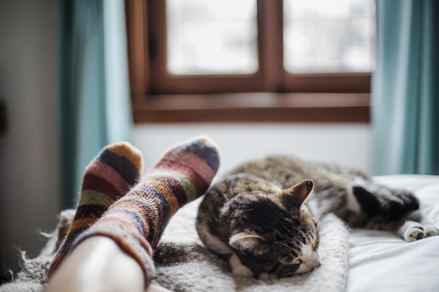 Фото №3 - 12 вещей, которые нужно успеть сделать по дому до зимы
