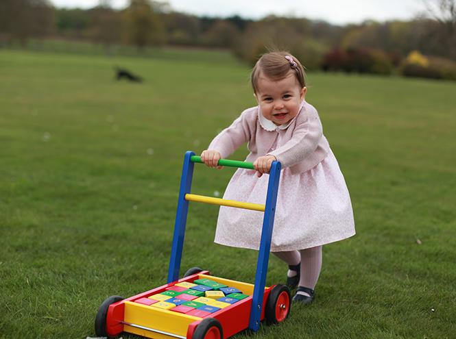 Фото №19 - Принцесса Шарлотта Кембриджская: первый год в фотографиях