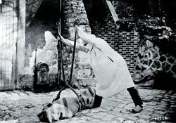 Фото №7 - Царица грозная чума