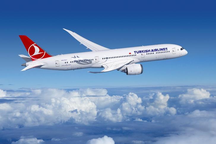 Фото №3 - Turkish Airlines бесплатно перевозит горнолыжный инвентарь