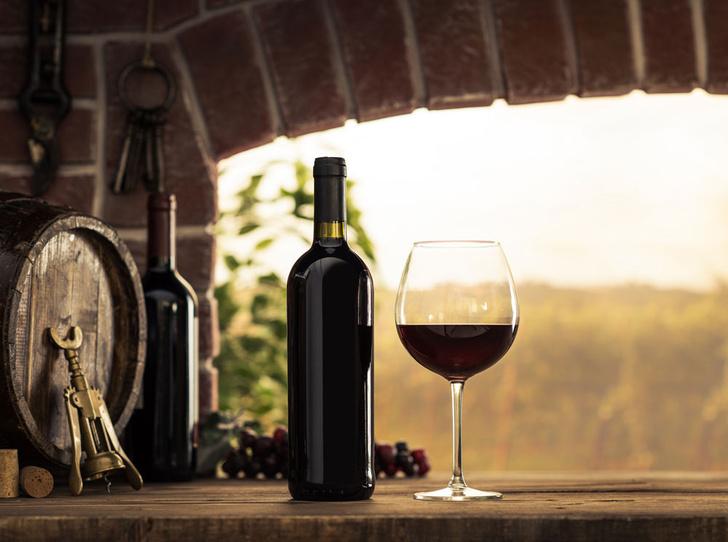 Фото №3 - Идеальное сочетание: как подобрать вино к стейку