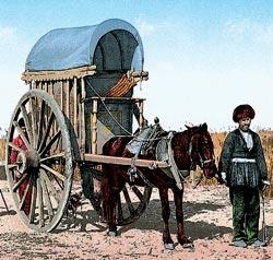 Фото №13 - Большой казанский Сабантуй