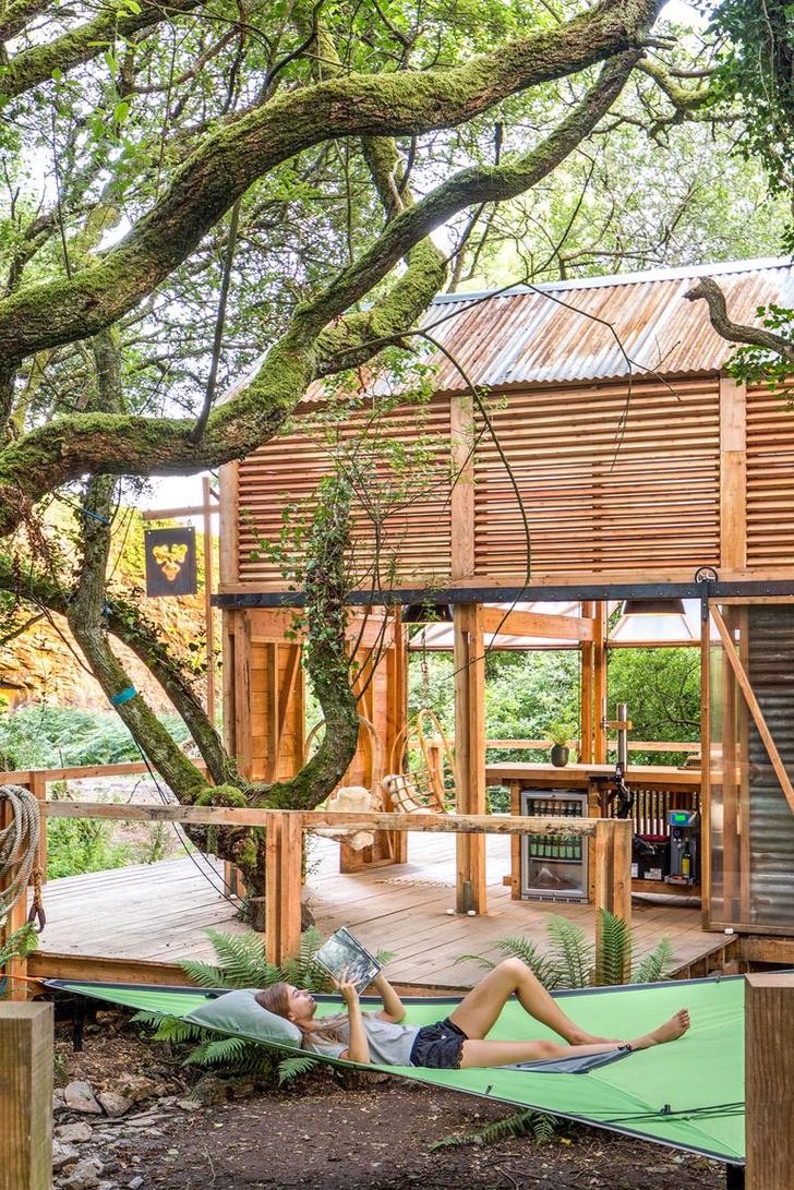 Фото №3 - Деревянная хижина в лесах Корнуолла