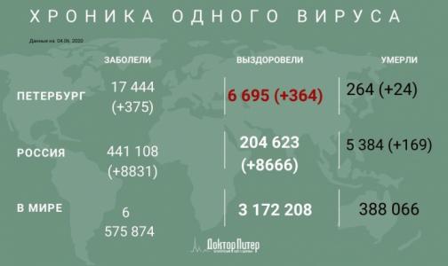 Фото №1 - За сутки коронавирус выявили у 375 петербуржцев, 24 умерли