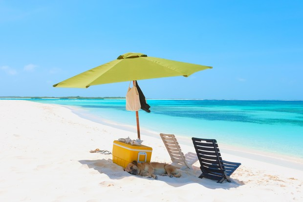 Фото №4 - Пикник на пляже: 10 секретов успеха