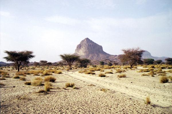 Фото №3 - Человеческое измерение пустыни
