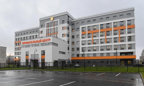 Фото №1 - В Гатчине открыли перинатальный центр