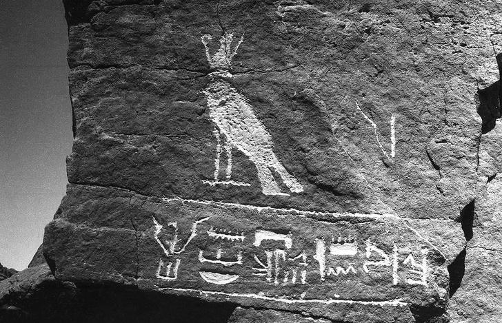 Фото №1 - В Государственном музее Востока открывается выставка «Путешествие в страну Куш»