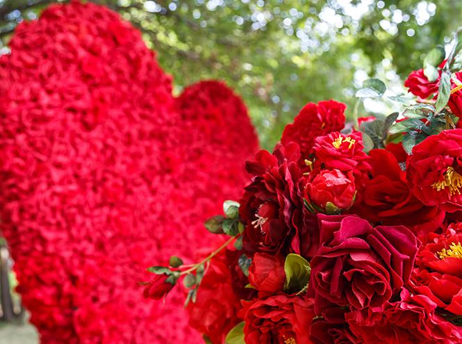Фото №4 - Видео: как прошел фестиваль цветов Moscow Flower Show