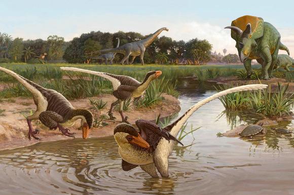 Фото №1 - В Северной Америке обнаружен новый вид динозавров