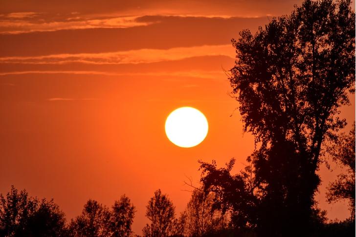 Фото №1 - ESA опубликовало самую близкую фотографию Солнца