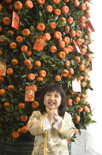 Фото №10 - Елки, палки, мандарины: как украшают новогодние деревья в разных странах мира