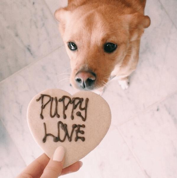 Фото №2 - Звездный Instagram: Леденцы, маффины и печеньки