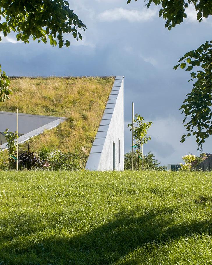Фото №3 - Дом с наклонной крышей в Литве