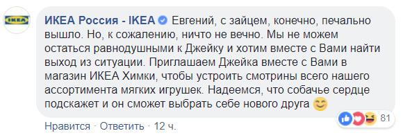 Фото №1 - Москвич попросил IKEA вернуть в продажу любимую игрушку его собаки, и вот что произошло