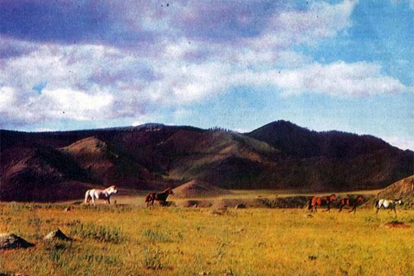 Фото №1 - Чулуут — долина петроглифов