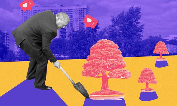 Фото №3 - Деревья в городе: как и для чего озеленяют общественные пространства