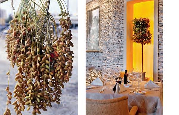 Фото №2 - Ресторан Mavrommatis в кипрском отеле Four Seasons