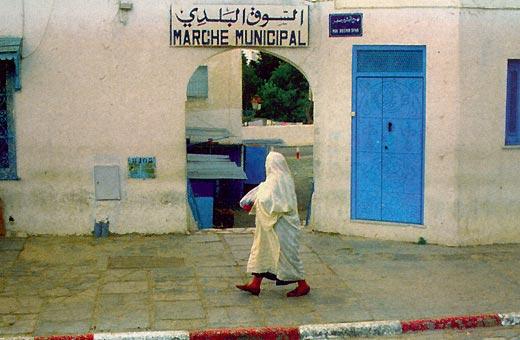 Фото №4 - Как в Тунисе нечаянно ходят в гости