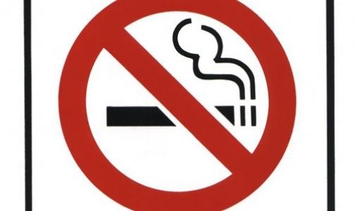 Фото №1 - Почему в России число курильщиков не уменьшается?