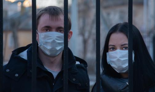 Фото №1 - Новый год без дискотеки. По каким правилам будет жить Петербург до 15 января
