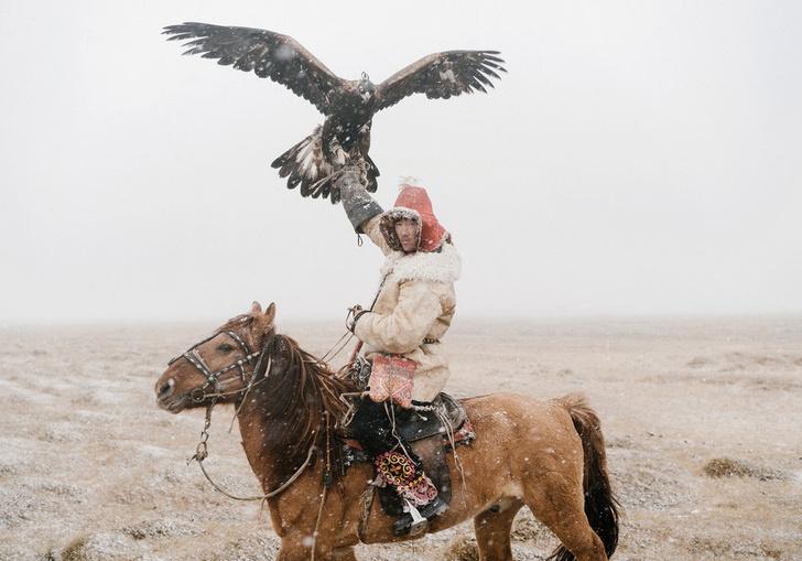 Фото №1 - Мир с комментариями в книге Northern Winds