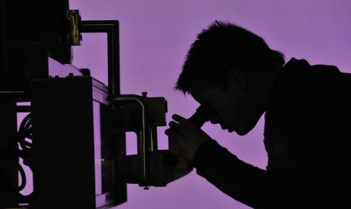 Фото №1 - Ученые раскрыли механизм заражения человека опасным паразитом