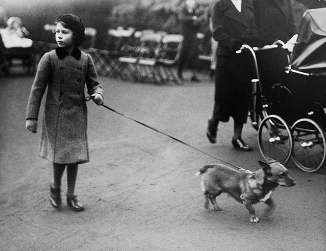 Фото №19 - Принцесса Лилибет: редкие детские фотографии Елизаветы II