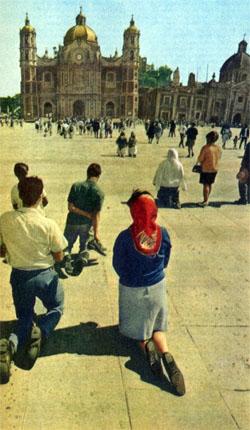 Фото №4 - По Мехико без гида