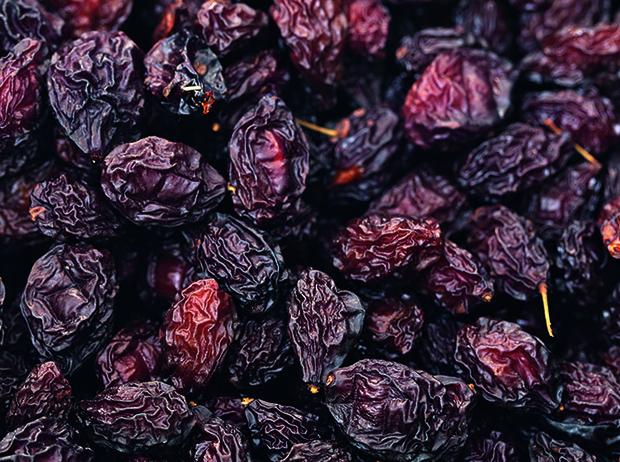 Фото №9 - Черное золото Аквитании: 7 небанальных блюд из слив
