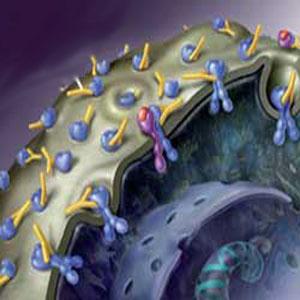 Фото №1 - Создан белок, вызывающий рак