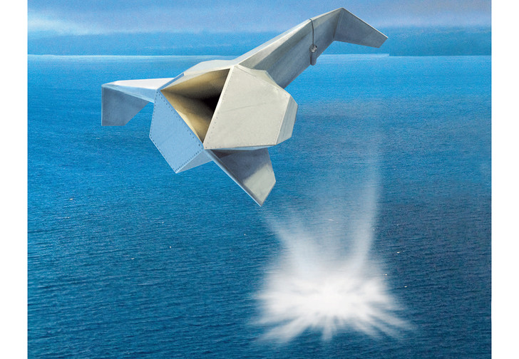 Cormorant. Проект американского концерна Lockheed Martin, 2006 год