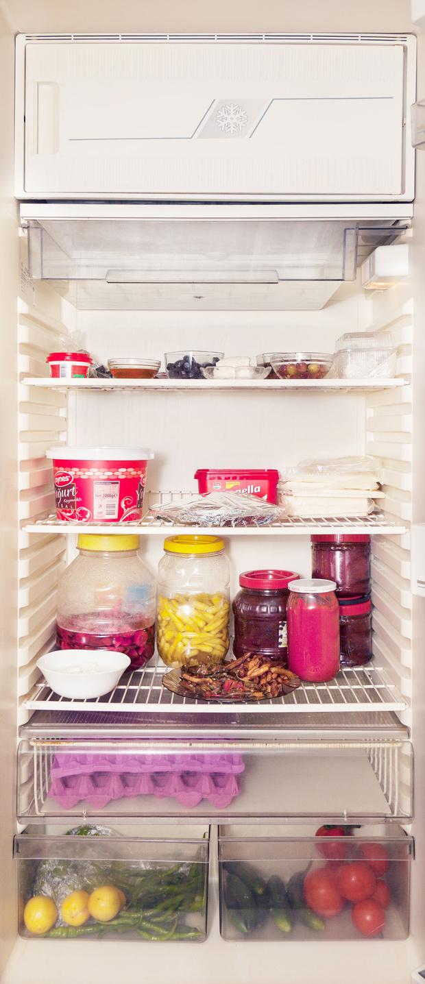 Фото №74 - Что лежит в холодильнике у жителей разных стран: 54 любознательных фото