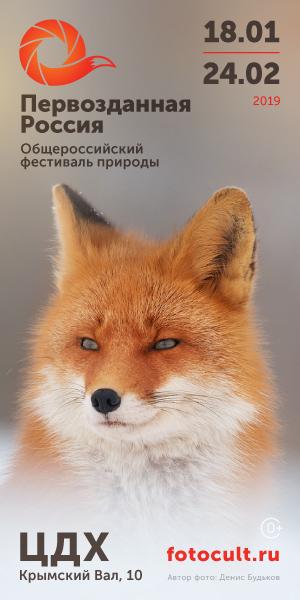 Фото №1 - День РГО и День севера на фестивале «Первозданная Россия»