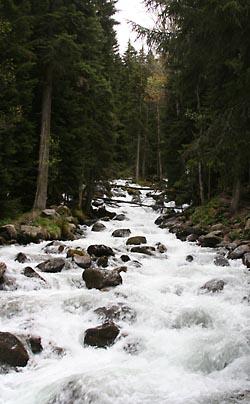 Фото №5 - Минеральные объятья кавказских вод