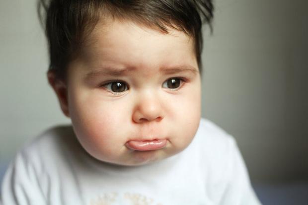 как утешить ребенка потерявшего питомца