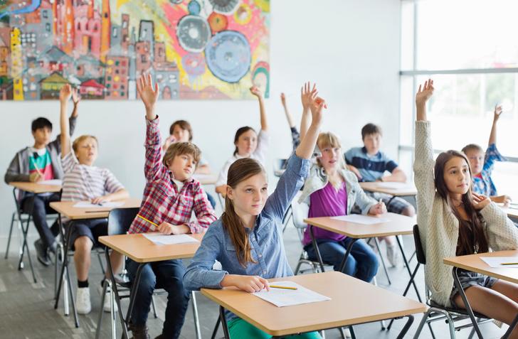 Дети в школах будут учиться, практически не выходя из классов