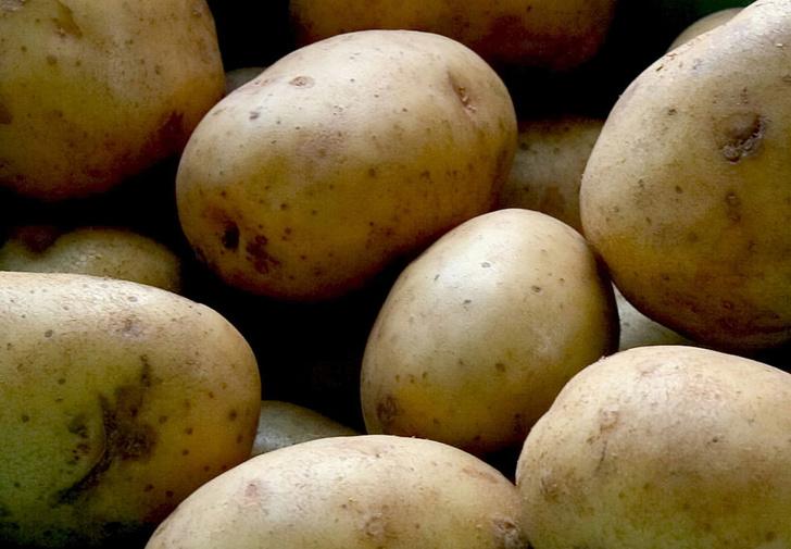 Фото №1 - Когда человек впервые попробовал картошку