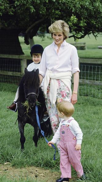 Фото №7 - 15 трогательных фото, доказывающих, что Уильям и Гарри были действительно близки