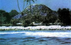 Фото №6 - Тайна тысячи островов