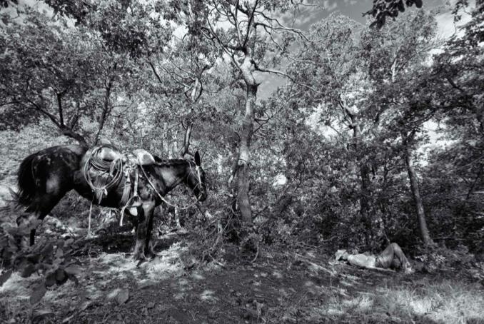 Фото №1 - В Москве пройдет выставка фотографий из жизни Чили